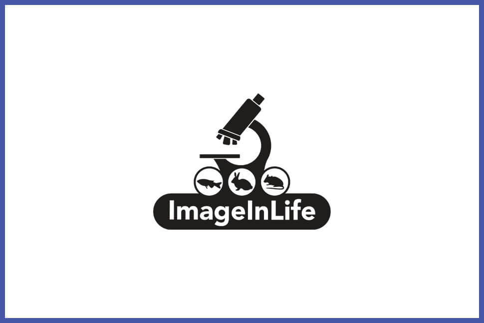 imageinlife-partner